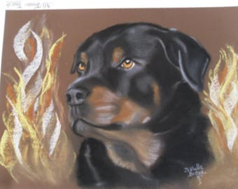 "Rottweiler ""Pastel size 24x32cm"""