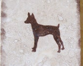 Toy Fox Terrier, Coasters, Gifts for Dog Lovers
