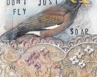Don't Just Fly Soar Print