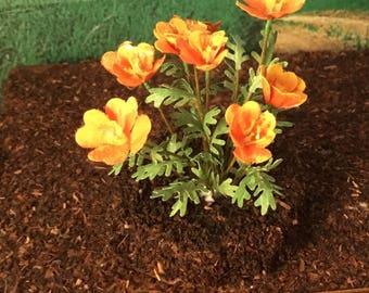 California Poppy - 1:12 scale