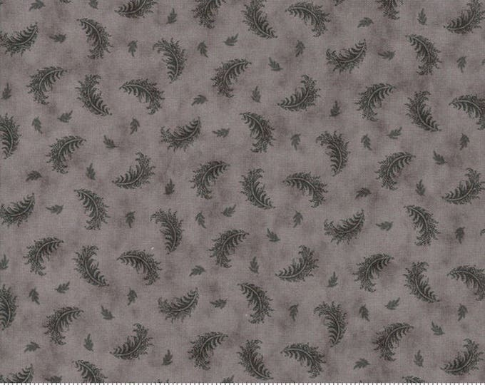 Quill - Plumes Grey 44151812 - 1/2yd