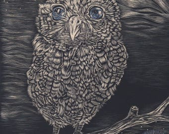 starry eyed owl scratch board art print