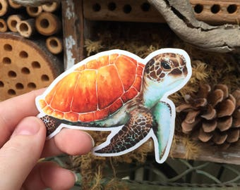 Watercolor Sea Turtle Die Cut Sticker | Turtle Sticker, Red Panda, Turtle Watercolor, Turtle, Sea Turtle, Art Sticker, Die Cut Sticker