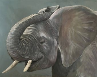 Lucky - Elephant Limited Edition Mounted A3 print direct from artist studio