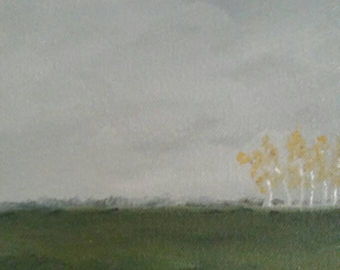 Birch Forrest - Oil Painting