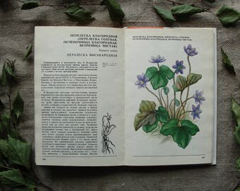 Rare Wild Plants (in Russian) - 96 Beautiful Color Drawings - Hardcover - Vintage Botanical Book, 1987. Medicinal Flower illustration Print