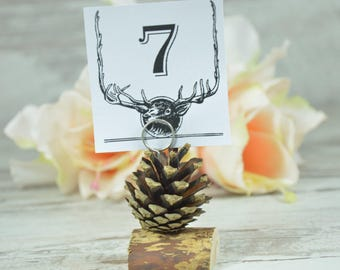wedding pinecone escoed cards rustic set of 14 woodland wedding place cards table numbers