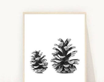 Pine Cone, Printable Art, Pine Cones print, Nature Art, Home Decor, Wall Decor, Scandinavian Print, Instant Download