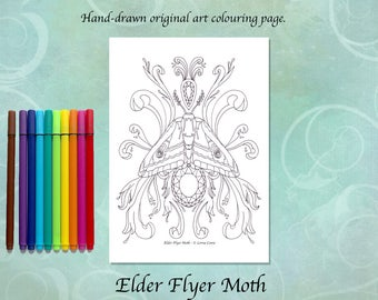 Elder Flyer Moth Printable Colouring Page