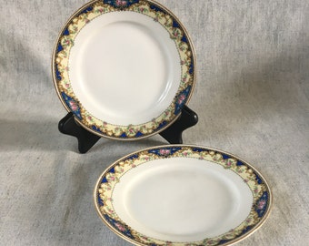 Vintage Royal Epiage Union K Czechoslovakia Blue and Pink Roses Bread and Butter Plates, Set of 2