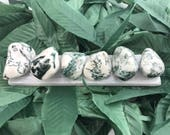 Tree Agate Stone of Shamans