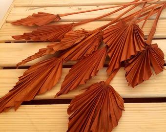 Orange Palm Leaves Mini, Fall Bouquets Supplies, Dried Flower Bouquet, Preserved Flowers, Dried Flower Arrangement Supply, 10 Deco Leaves