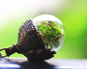 Acorn terrarium pendant, glass locket pendant, botanical pendant, terrarium necklace, inspired by nature