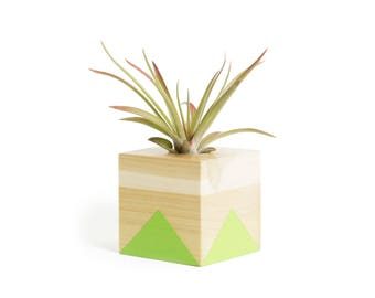 Green Air Plant Pot, FREE SHIPPING, Air Plant Office, planter, air plant holder, air planter, shelf decor, air plants, indoor planters