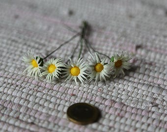Small realistic paper flowers. Set of 5 miniature paper camomiles