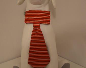 Dog Collar Neck Tie - Medium - Red/Gold Stripe