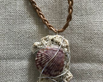 Coral and shell
