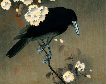 "Japanese Art Print ""Crow and Blossoms"" by Ohara Koson, woodblock print reproduction, fine art, asian art, cultural art, cherry blossoms"