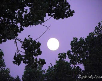 Full Moon in Purple Sky- Drumheller, Alberta, Canada- July 23, 2010