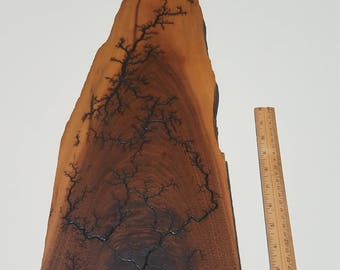 Lictenberg burned walnut wall art