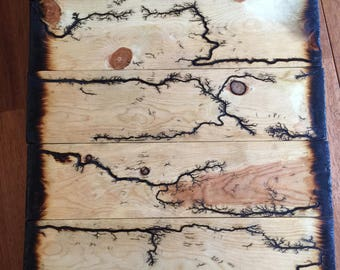 Lichtenberg Wood Burning