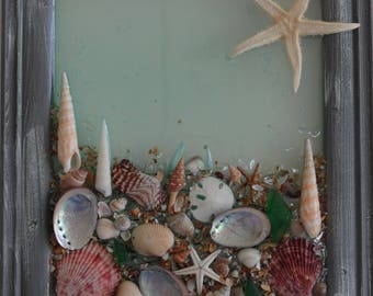 Wall hanging . Sea shells , cottage chic.