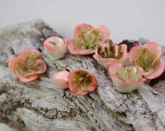 7 Apple flowers molded of cold porcelain (lot no. 2)