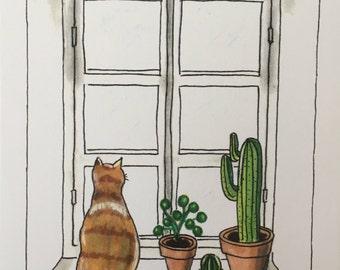 Kat voor het raam 5.        Ansichtkaart met kat en planten voor het raam (Postcard cat and plants window).