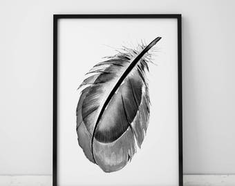 Stylish Black Feather Print Digital Download