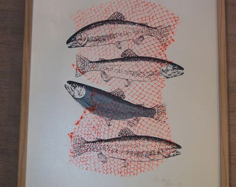 Screen printing collage of fish, limited edition, hand drawn, 4 color print