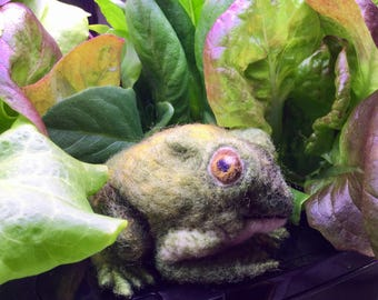 Needle Felted Toad -- Colorado River Toad -- Toad Toy -- Wool Frog
