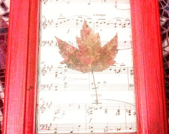Fire Framed Dried Maple Leaf