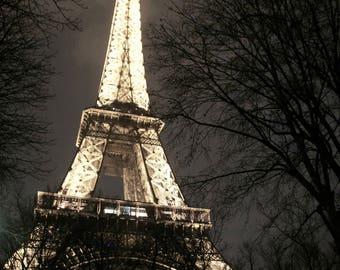 Eiffel Tower Canvas Photo