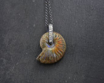 Opalized Ammonite Fossil Necklace Sterling Silver Ammonite Pendant Fossil Necklace Sea Shell Necklace