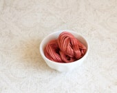 CORAL REEF 0591 Gentle Art GaST hand-dyed embroidery floss cross stitch thread at thecottageneedle.com 2018 Nashville Market