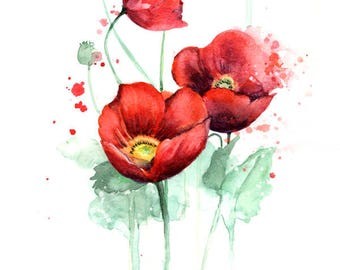 Watercolor Flower Print - Red Poppy Flowers