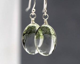 NEW: 925 Sterling silver bending willow transparent earrings. 3D glass dangling earrings. Nature inspired tree earrings. Gift for her.