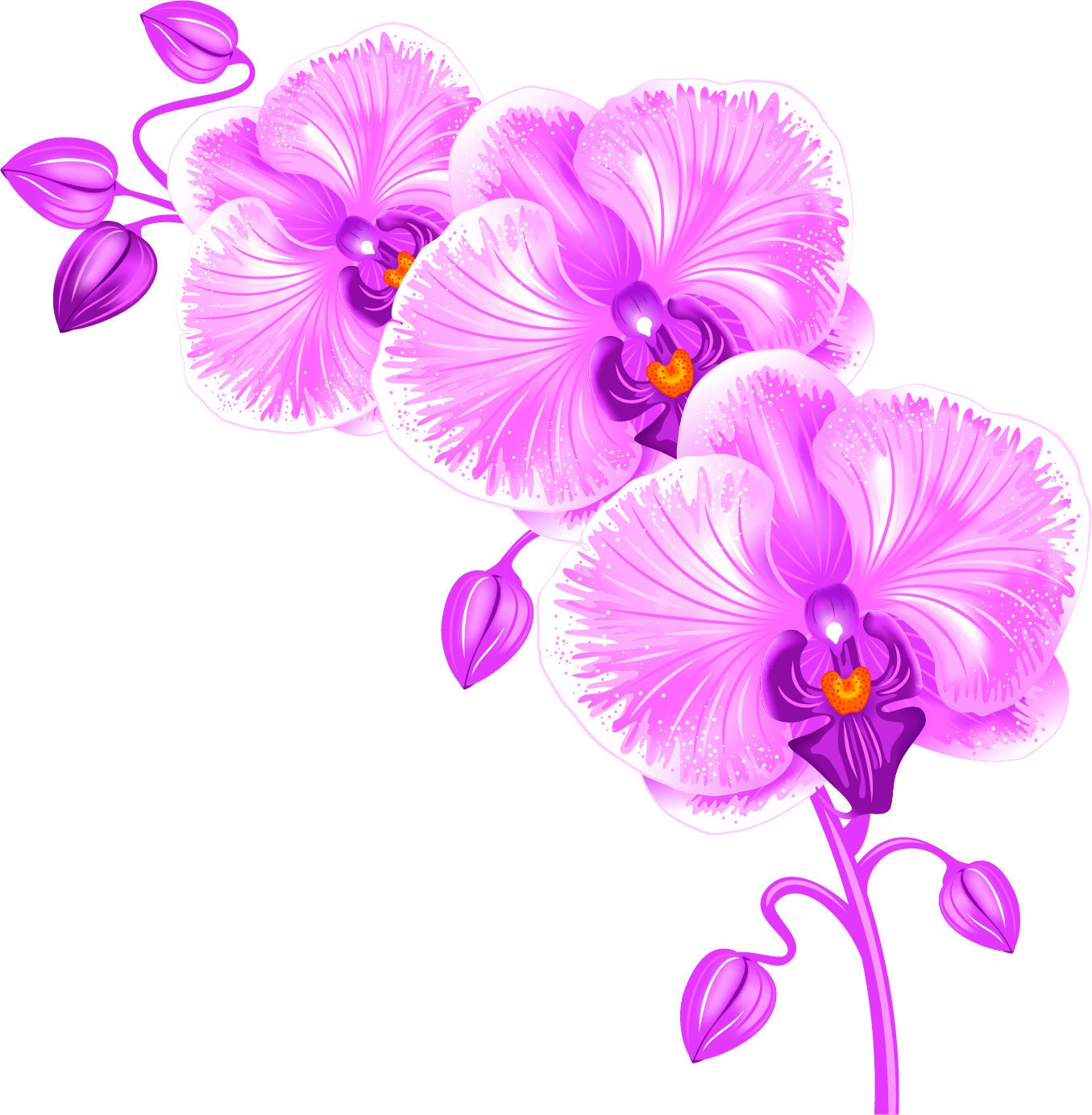 Pink Orchid Decal, Orchid Wall Sticker, Floral Wall Decor, Vinyl ...