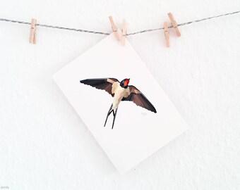 Swallow illustration, Swallow print, Minimal animal art, Geometric swallow print, Flying bird print, Bird in flight art, Migrating bird art