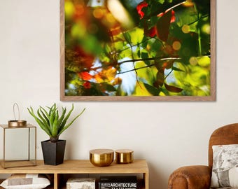 Abstract nature art, leaves photography, large wall art, 20x30, 24x36 print, nature art poster, bright red orange green, living room decor