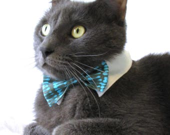 Gray and Blue Dashed Bow Tie, Necktie, or Bow on a Shirt Style Collar for both Dogs & Cats