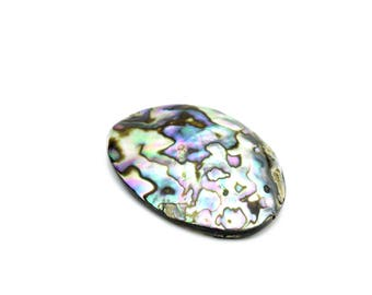Large Genuine Abalone Shell 35x45mm 1pc