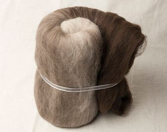 Super soft natural merino large gradient batt for spinning or felting (170097)