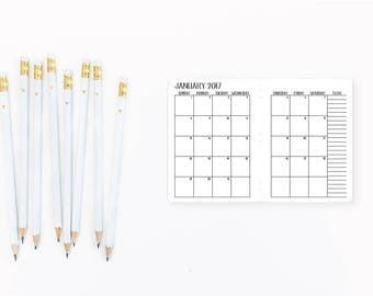 2017 Monthly Micro size Traveler's Notebook Insert – Nano size - Traveller's - micro tn - nano tn