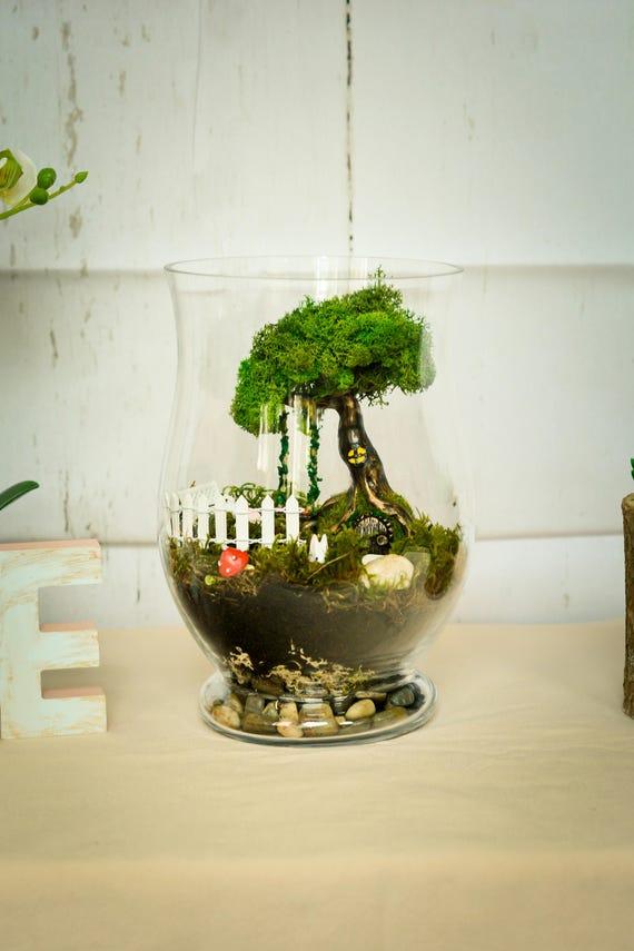 terrarium kits miniature garden moss terrarium living moss terrarium fairy garden kit fairy. Black Bedroom Furniture Sets. Home Design Ideas
