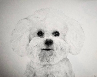 CUSTOM PET PORTRAITS (Pencil, Colored Pencil, Hand Drawn Artwork) Great for gifts!