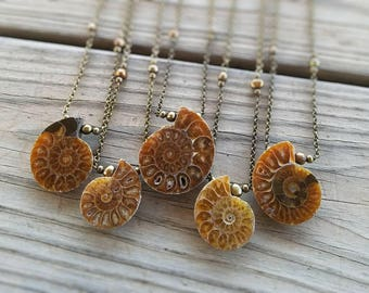 ammonite fossil necklace / choose your ammonite necklace / ammonite jewelry / ocean jewelry / science gift / ammonite pendant / HEY08Q