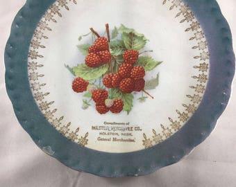 D.E. McNicol East Liverpool Vintage Advertising Plate - Raspberries