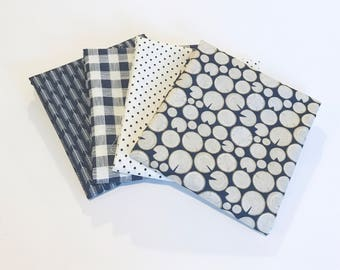 SALE!! Fat Quarter Bundle High Adventure by Designs by Dani for Riley Blake Designs- 4 Fabrics Blue
