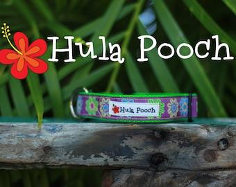 "Dog Collar ""Pop Flower"" Lime Green Purple - Small Dog Collar, Medium Dog Collar, FREE SHIPPING, Adjustable"